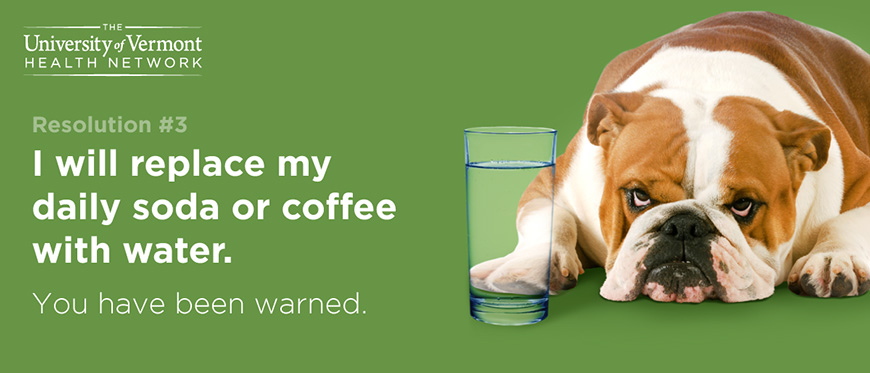 Dog laying in front of water, not happy it has replaced his coffee