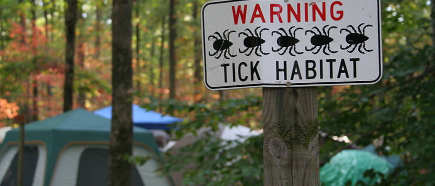 Tents set up in woods with tick warning sign posted to tree