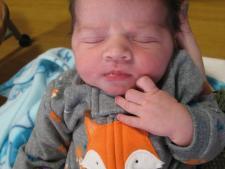 Baby Sullivan