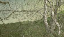 Harald Aksdal's watercolor Stillness