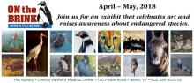 Collage of endangered species artwork from On the Brink Exhibit
